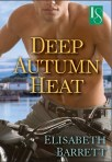 Deep Autumn Heat Cover